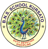 BNS English School, Kursato